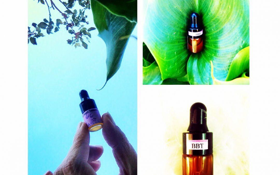 ¿Cómo testamos nuestra cosmética Bitrix Beauty Treatment?